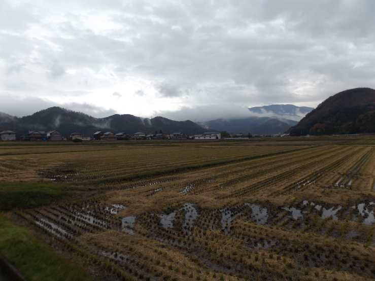 yamamuro photo