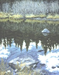 Still Water - Oil/canvas - 23 x 30 inches