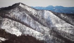 Towards Mt Buller