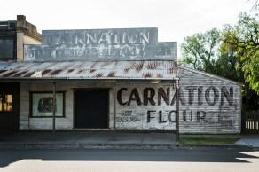 Talbot Carnation Flour