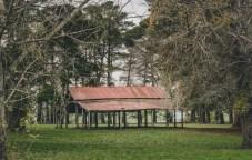 Kyneton-botanic-gardens