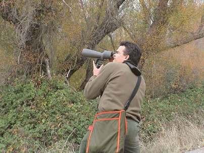 birding-at-graylodge-NWR