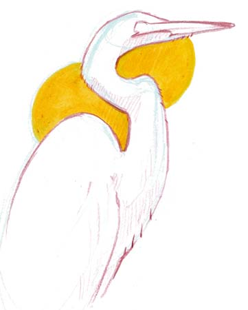 How to Draw Herons and Egrets (video)