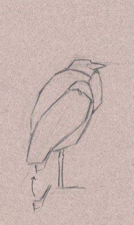 Shape, next to a shape, next to a shape. The drawing emerges.