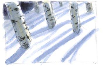 aspen in winter 5