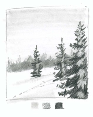 Now start to carve in the snow with the fine point eraser. Start in the middle of the trees making irregular clumpy masses of snow. Think of branches suspending snow pointing toward you.