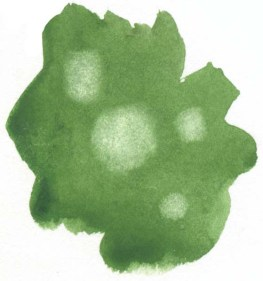 With a damp brush, re wet and gently scrub some of the color in little circles where you want your dew drops to sit. Then lift out the paint with a damp paper towel. You can also lift out paint before it dries on the paper. Timing is important here. If the paper is too wet when you try to lift out, the paint will simply run back into the clear spots.