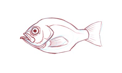 Pectoral Fins: On fish with a symmetrical tail, the pectoral fin is higher on the side of the body and often is held flat against the side of the body. Pectoral fins are homologous with forelimbs and are paired (one on each side of the body).