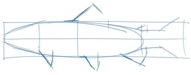 Using the dots and lines, draw in the rough shapes of the fins. Using negative shapes is again a useful trick here.