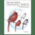 drawing-birds