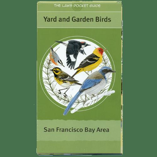 yard-garden-birds