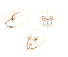 Wrap the eye socket with muscles and cheek bones. There is a large bulge above the eye and a smaller one below the eye.