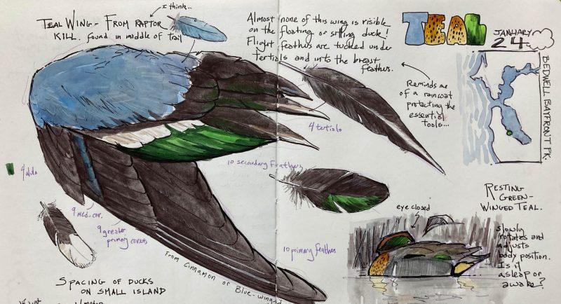 NJC, Episode 20: Measured Drawings