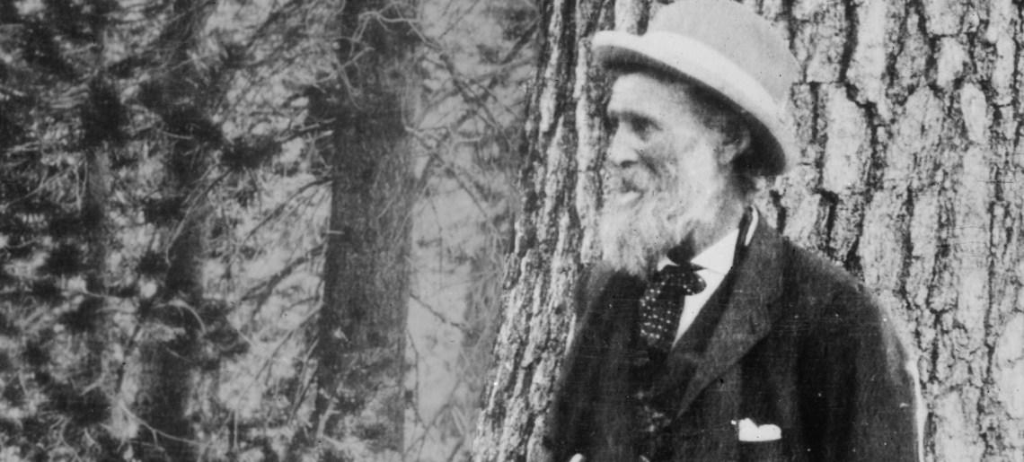 Sierra Club John Muir Exhibit Review