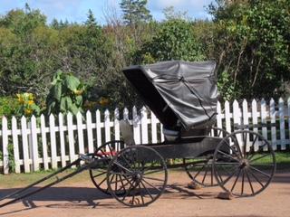 buggy-02-hma