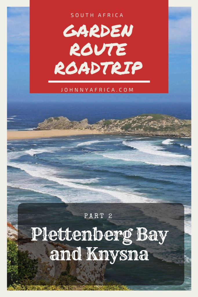 Encompassing mountains, oceans, and some of the world\'s most beautiful scenery, the Garden Route is easily one of the best roadtrips you can do in the world. #gardenroute #roadtrip #southafrica #capetown #addoelephantpark #safari #tsitsikama
