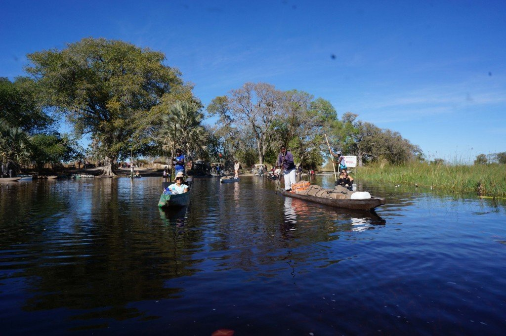 Arriving at our mokoro launch site in the Okavango.