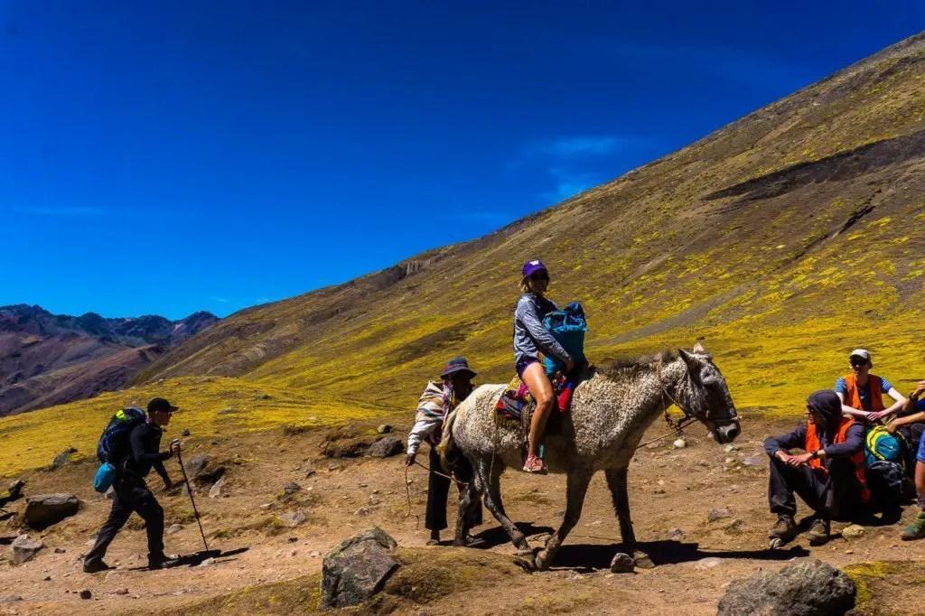 Horse rainbow mountain