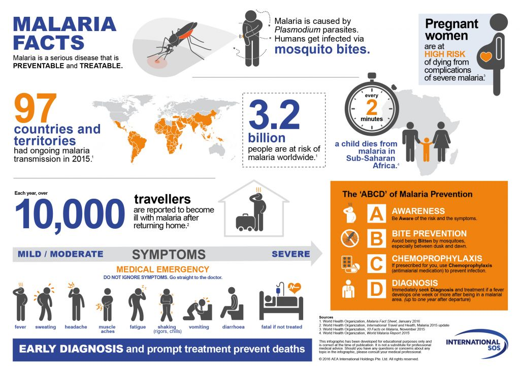 malaria summary transmission prevention treatment