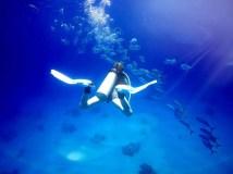 Jackfish Turks and Caicos scuba diving