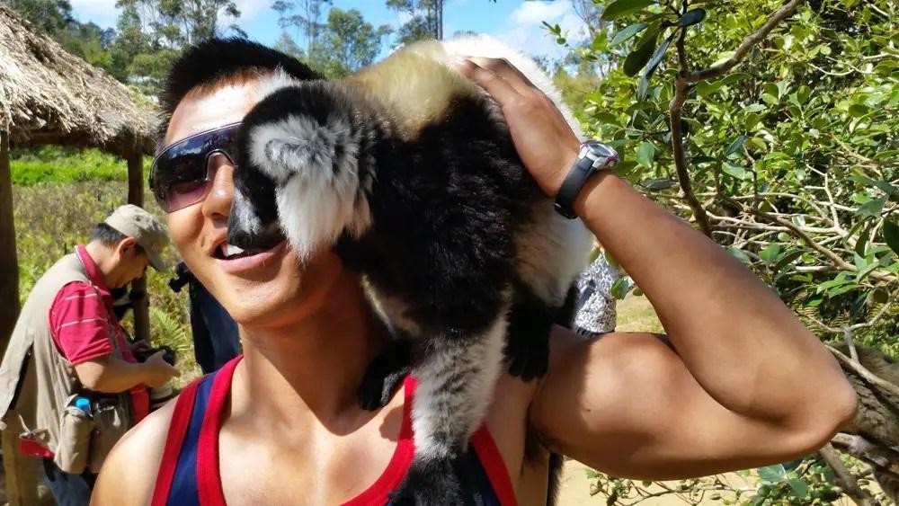 Vakona lodge lemur island playing with lemurs