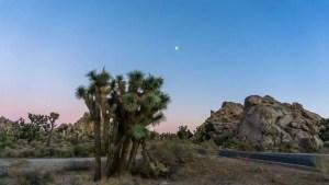 Joshua Tree sunset national park california