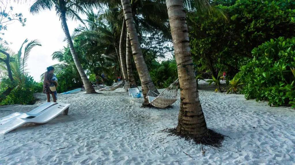 thoddoo beaches maldives