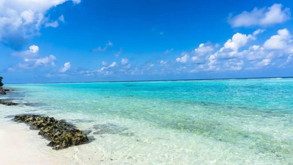 beach thoddoo maldives