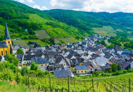 Rhineland Pflaz beautiful views of the vineyards