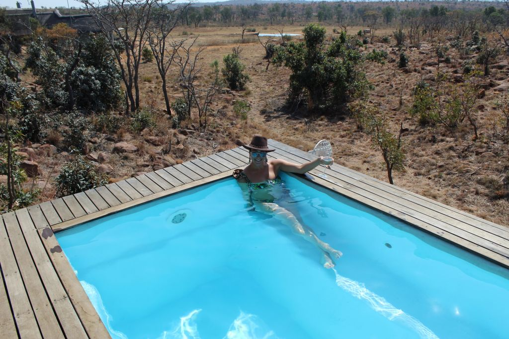 Private pool with a view of the game reserve!