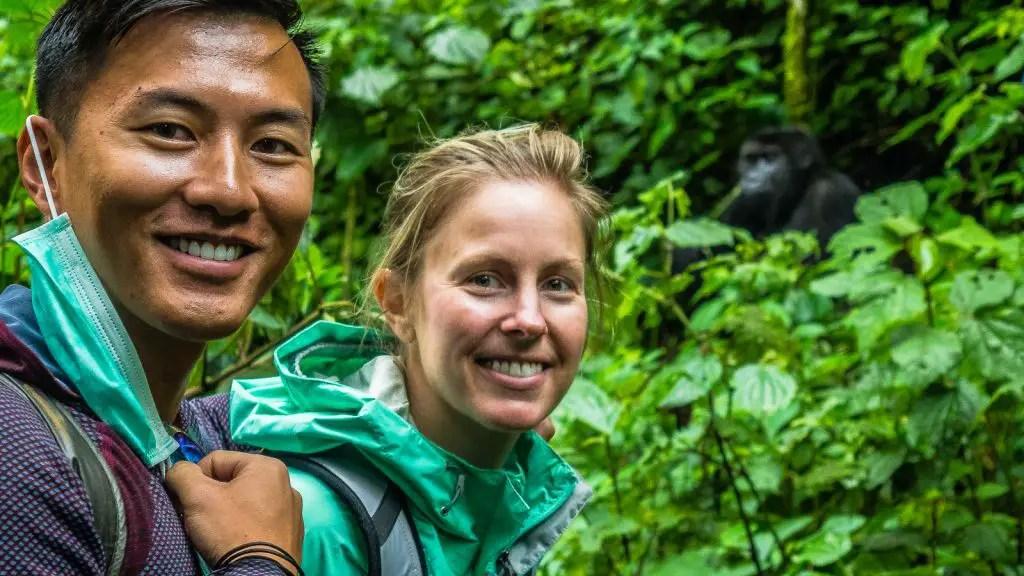 gorilla congo kahuzi biega