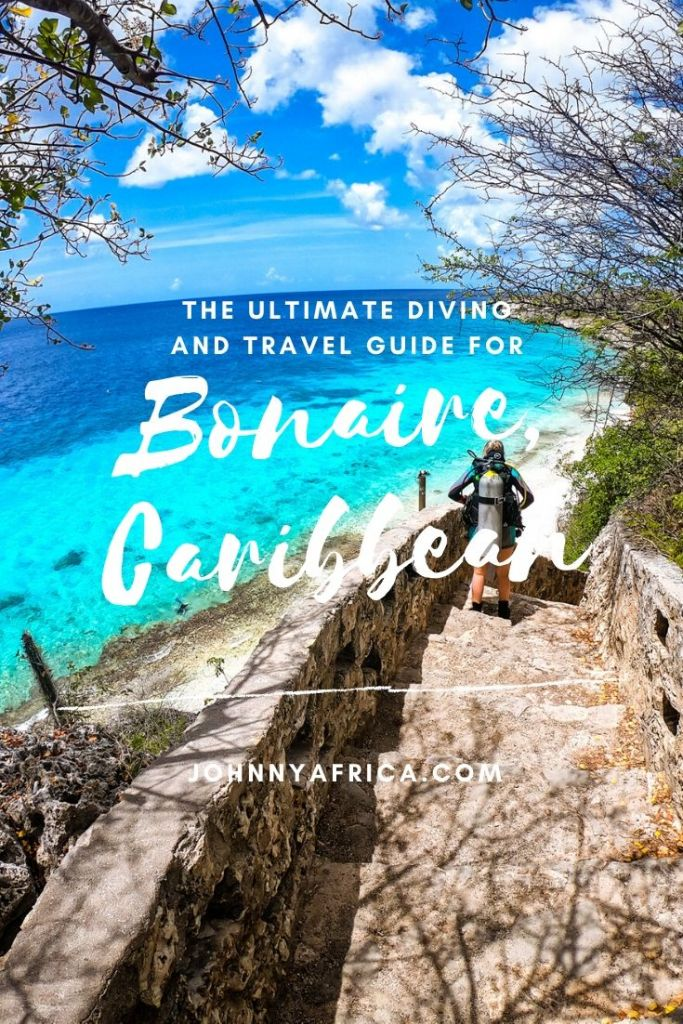 The Ultimate Travel And Diving Guide For Bonaire
