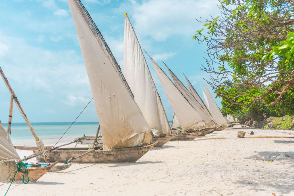 Pemba island Tanzania