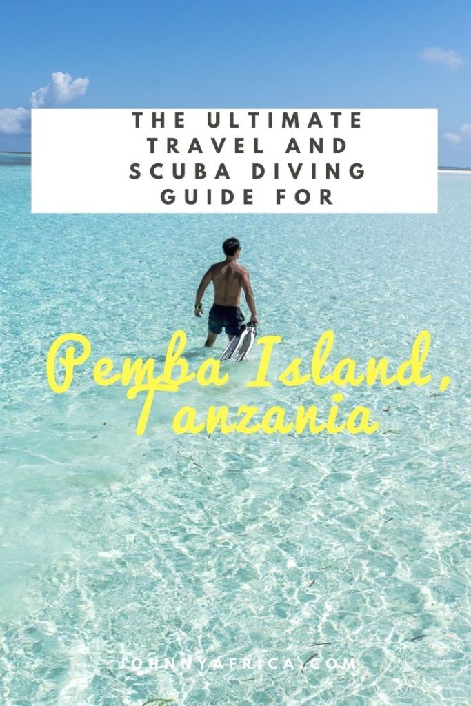 The Ultimate Pemba Island Travel And Diving Guide