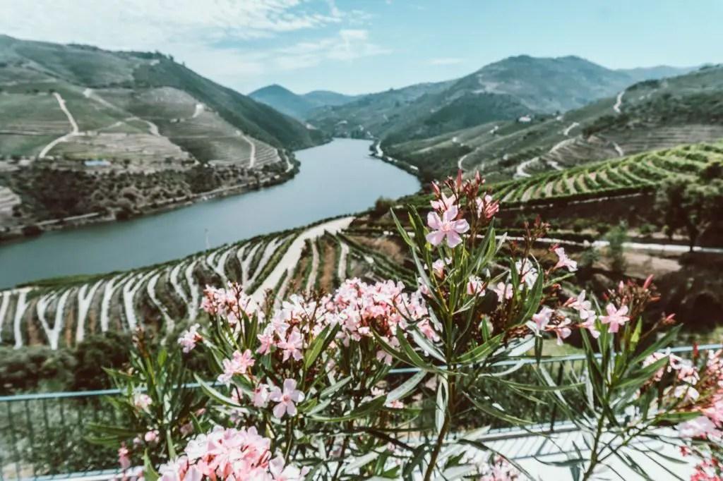 Quinta Do Popa Douro Valley
