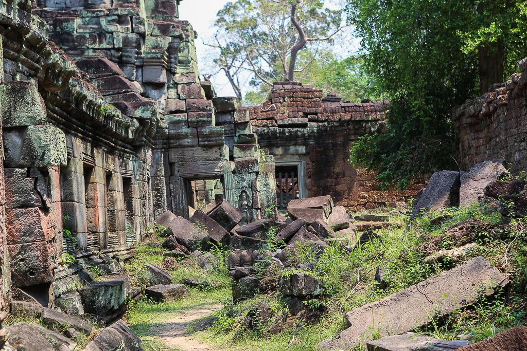 Angkor Wat Wilderness-1