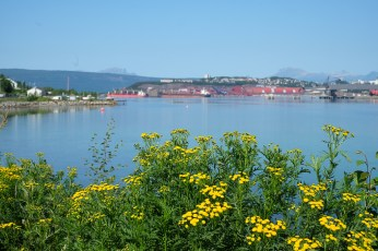 Narvik-best-pictures-3027