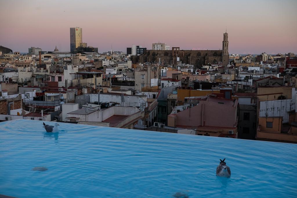Barcelona_Best_Pictures-5824