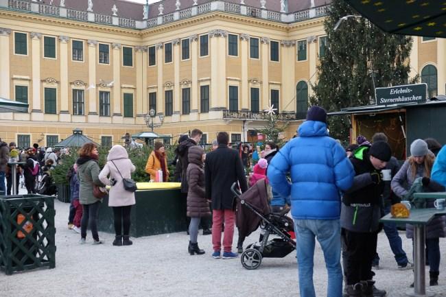 Julmarknad_Schönbrunn-8344