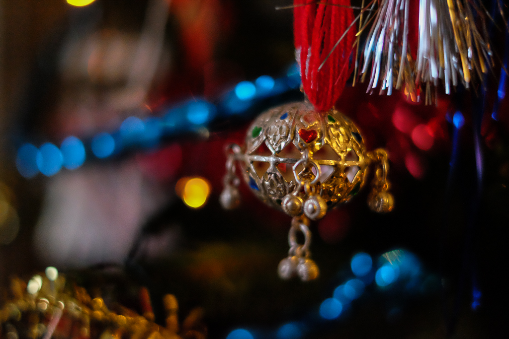 Most_beautiful_Christmas_tree-8415