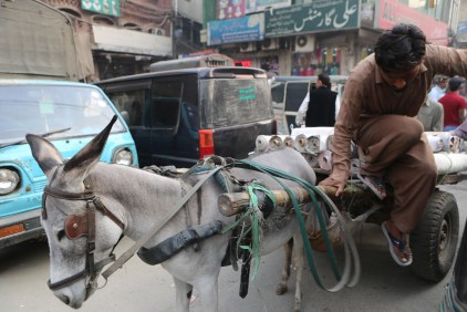 Lahore_Best_Pictures-1039