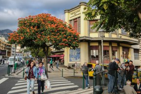 Madeira_Funchal_Market_2