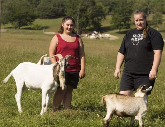 Family friend Katie McIntosh, 15, of Lockwood with Lucky, a male goat, as Karen Amadori, right, stands next to a boer doe at her farm in Erin.