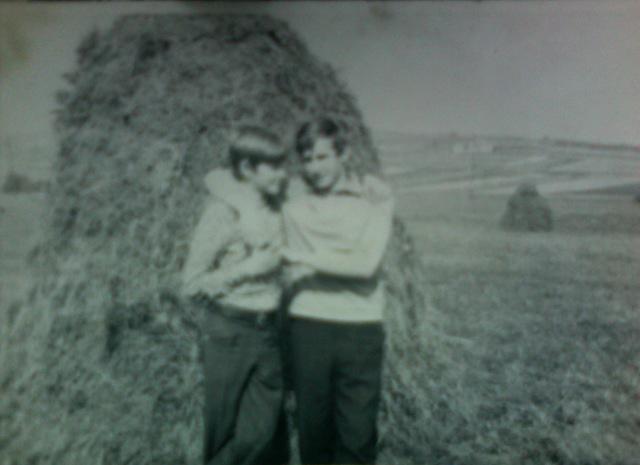 haystack boys