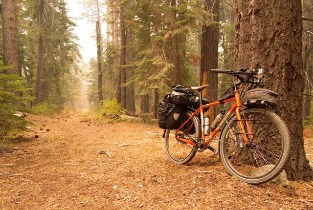 Adventure cycling among the Ponderosa pines of the western Sierra Nevada mountains.