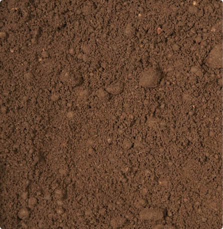 Topsoil-Double-Screened.jpg?resize=445%2C457&ssl=1