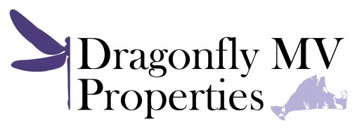 Dragonfly MV Properties Logo