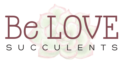 Be LOVE Succulents logo 1