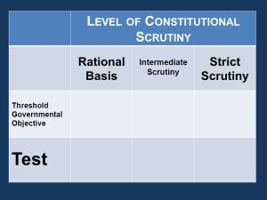 Constitutional_Scrutiny
