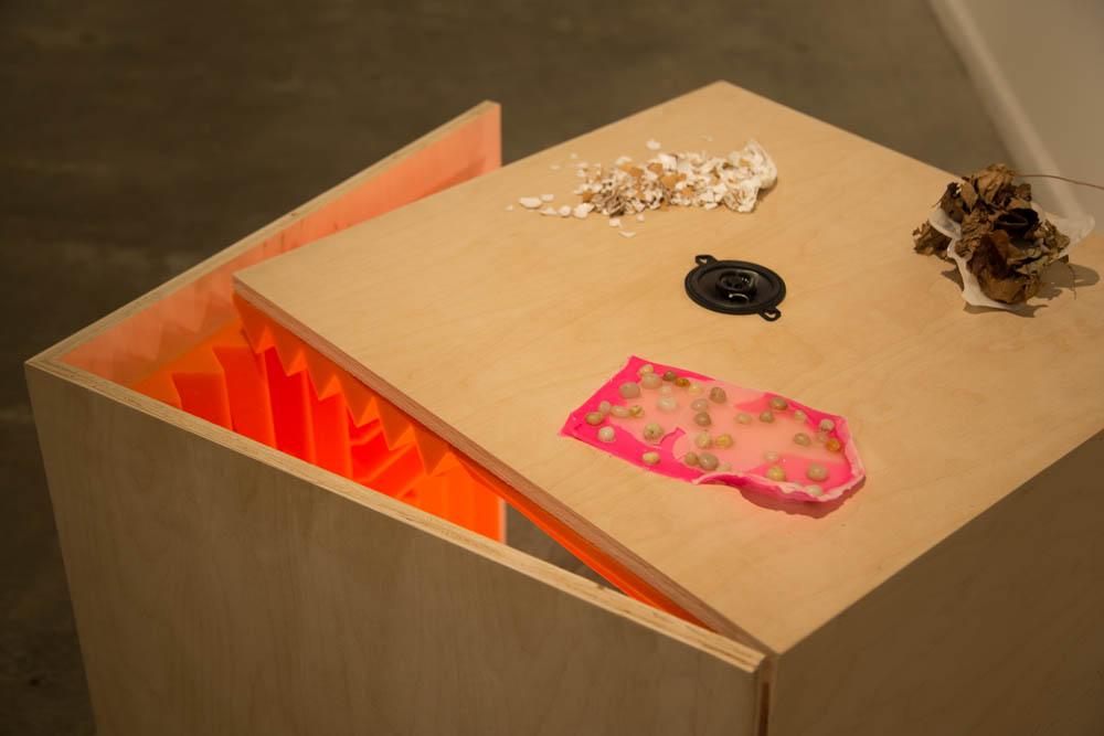 Shrink Trap – Lesley Heller Gallery (2014)